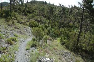 Sentiero-Libiola-Case-Gromolo-24