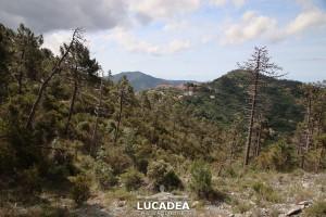Sentiero-Libiola-Case-Gromolo-25