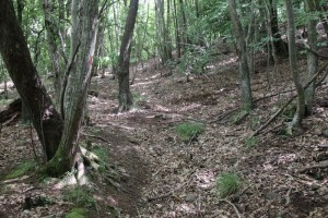 Sentiero-Libiola-Case-Gromolo-38