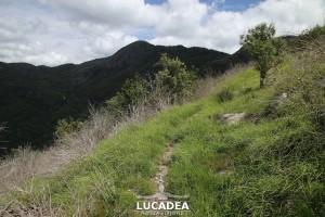 Sentiero-Libiola-Case-Gromolo-43