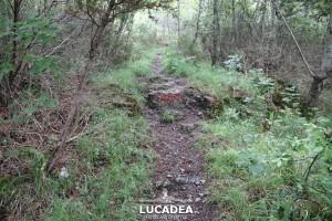 Sentiero-Libiola-Case-Gromolo-47