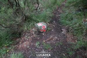 Sentiero-Libiola-Case-Gromolo-48