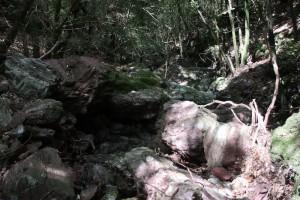 Sentiero-Libiola-Case-Gromolo-51