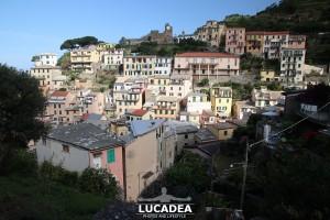 Sentiero-Riomaggiore-Portovenere-04