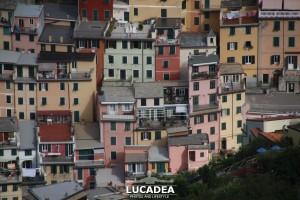 Sentiero-Riomaggiore-Portovenere-07