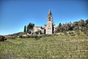 Basilica-dei-Fieschi-01