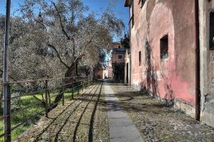 Basilica-dei-Fieschi-05