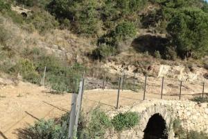 i_ponti_della_valle_del_fico_13