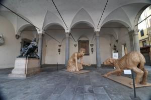 Lucca-67