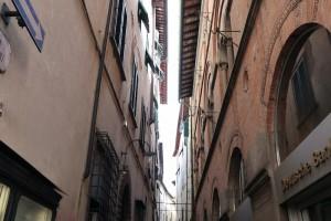 Lucca-91