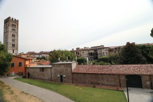 Lucca2-16