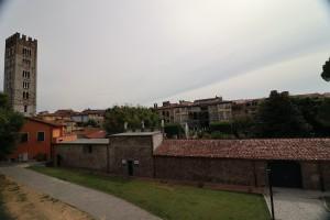 Lucca2-17