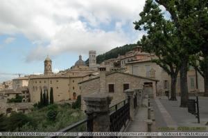 Assisi15