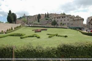 Assisi22