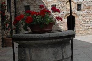 Assisi48
