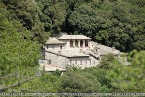 Assisi50