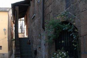 Orvieto64