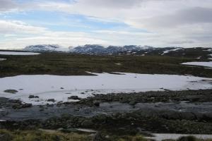 013 - Hardangervidda