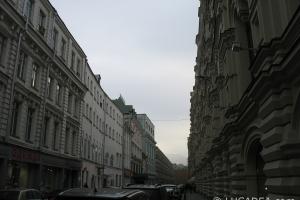 mosca_08