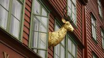 Foto di Bergen - Norvegia (foto)