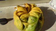 Limoni veramente strani