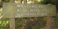 Foto Parco Blue Mountains - Australia