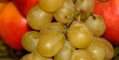 Frutta di stagione: uva (foto)
