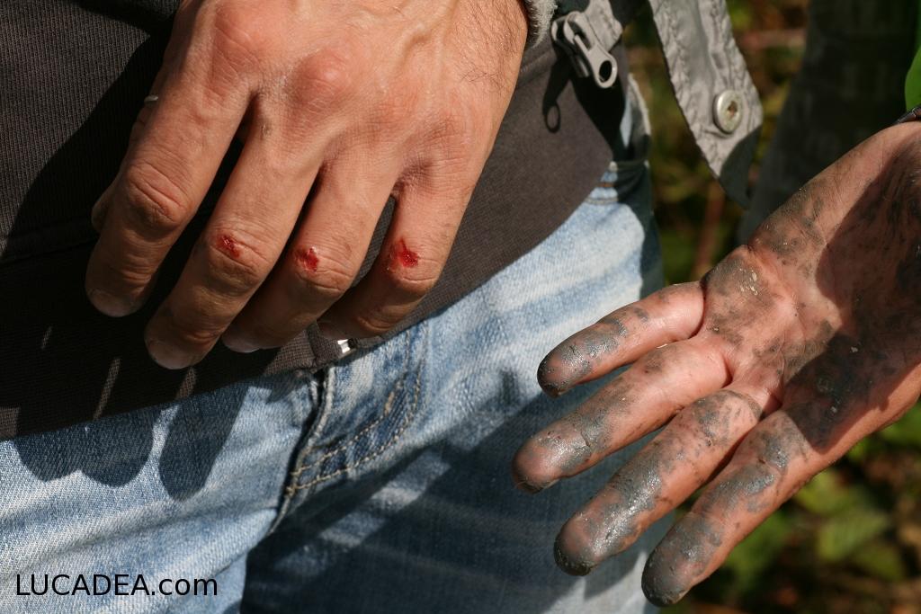 Mani ferite (foto)