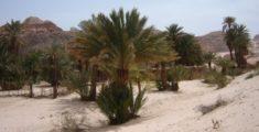 Il Deserto del Sinai in Egitto