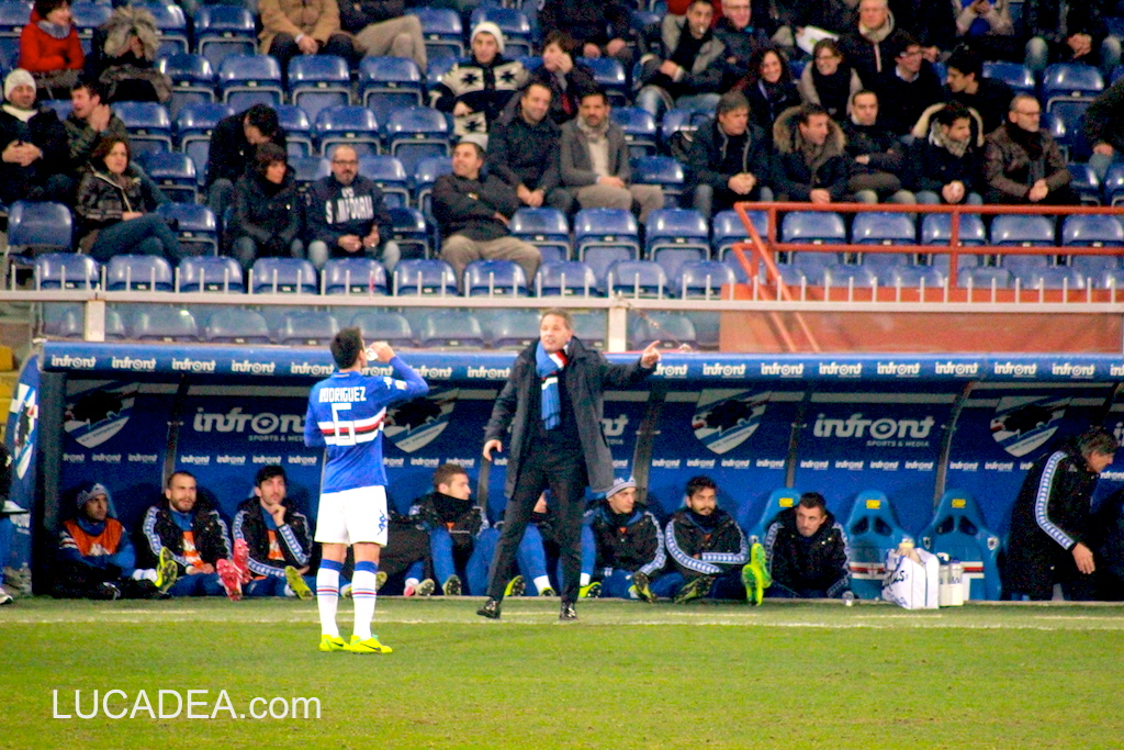 Sampdoria-Verona 2013/2014 coppa Italia