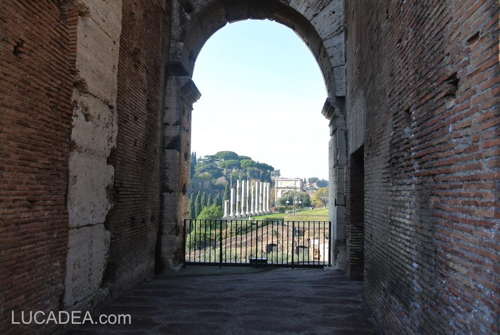 I fori romani visti dal Colosseo