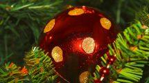 Buona Vigilia e Buon Natale