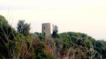 La torre di Punta Baffe