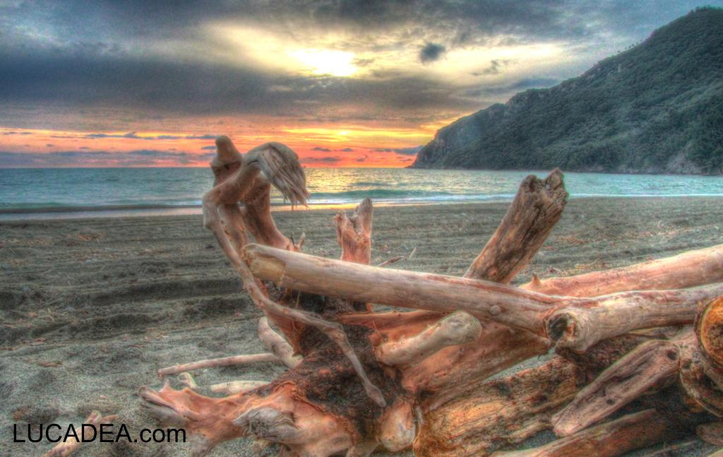 La legna sulla spiaggia di Riva Trigoso al tramonto
