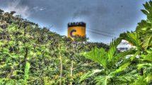 Ciminiera dietro la foresta (foto hdr)