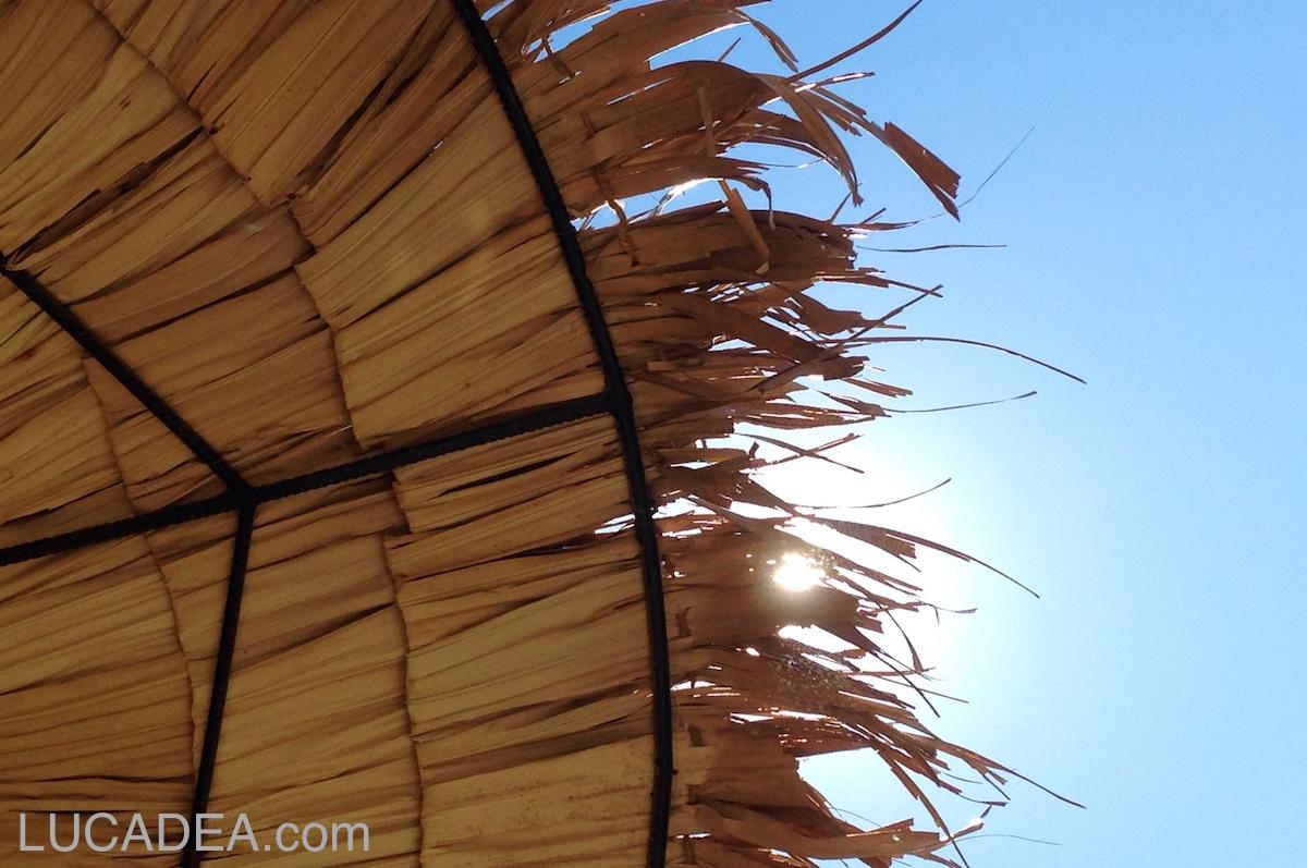 Protetti da un ombrellone di palma