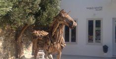Drifting horse (foto)