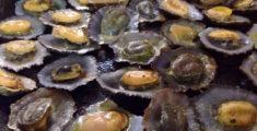 Frutti di mare a Funchal