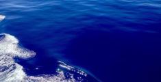 Il mare è una tavola blu