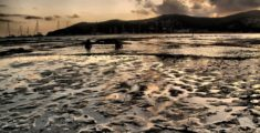 Tramonto a Ses Salines