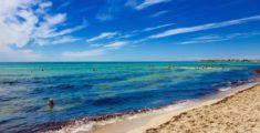 Spiagge da sogno: Punta Prosciutto, Salento