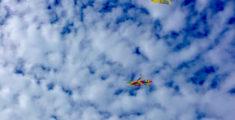 Aquiloni nel cielo di Sestri Levante (foto)