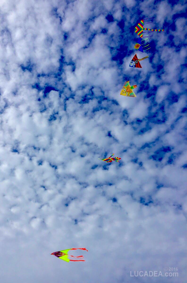 Aquiloni nel cielo di Sestri Levante