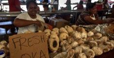 Frutta tropicale a Pago Pago: il frutto dell'albero del pane (foto)