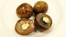 Lycis: il frutto anche detto la ciliegia della Cina