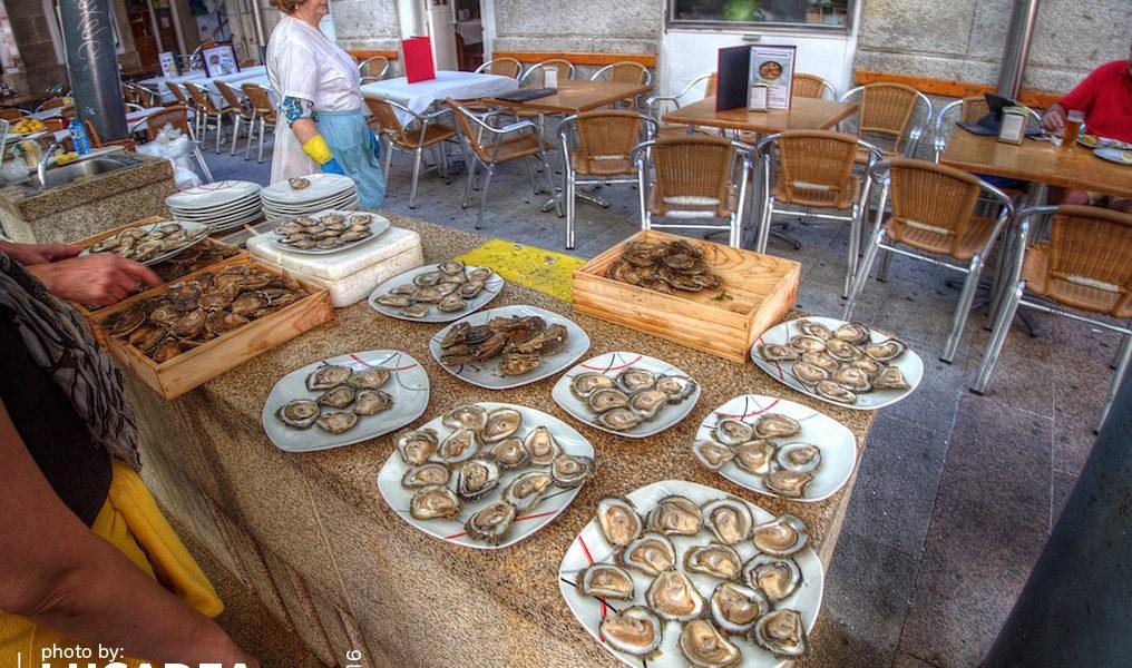 Ostriche fresche a Vigo