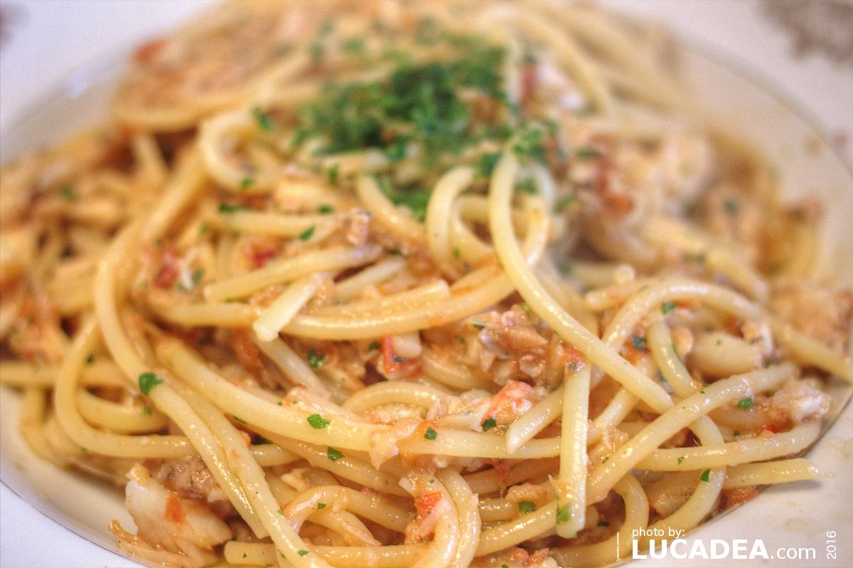 Spaghettoni al sugo di scorfano