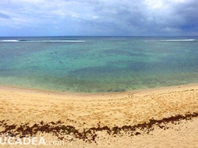 Spiagge da sogno: Tonga