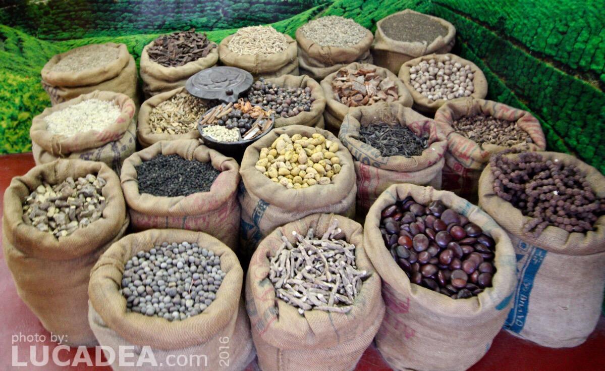 Spezie indiane trovate e fotografate a Cochin