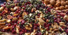 Frutta secca spagnola (foto hdr)